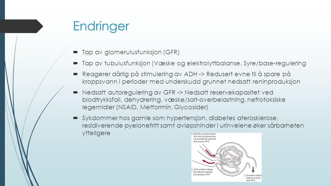 Endringer  Tap av glomerulusfunksjon (GFR)  Tap av tubulusfunksjon (Væske og elektrolyttbalanse, Syre/base-regulering  Reagerer dårlig på stimulering av ADH -> Redusert evne til å spare på kroppsvann i perioder med underskudd grunnet nedsatt reninproduksjon  Nedsatt autoregulering av GFR -> Nedsatt reservekapasitet ved blodtrykksfall, dehydrering, væske/salt-overbelastning, nefrotoksiske legemidler (NSAID, Metformin, Glycosider)  Sykdommer hos gamle som hypertensjon, diabetes aterosklerose, residiverende pyelonefritt samt avløpshinder i urinveiene øker sårbarheten ytteligere