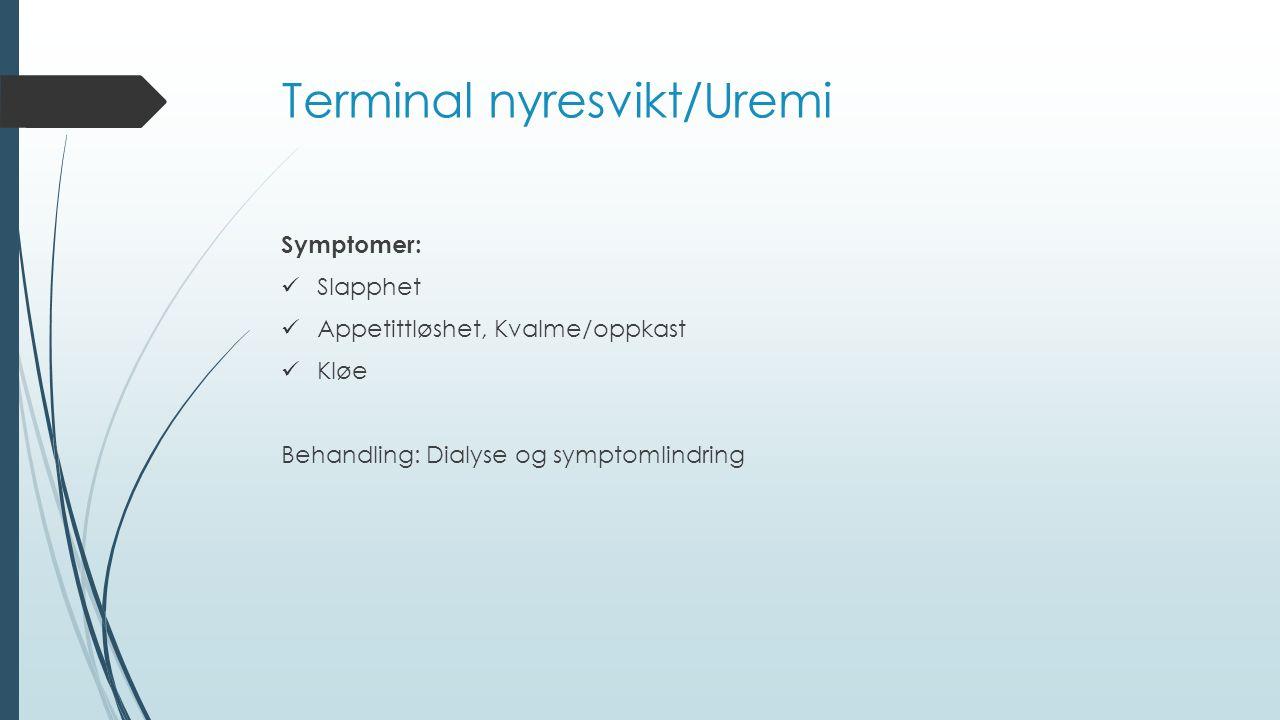 Terminal nyresvikt/Uremi Symptomer: Slapphet Appetittløshet, Kvalme/oppkast Kløe Behandling: Dialyse og symptomlindring