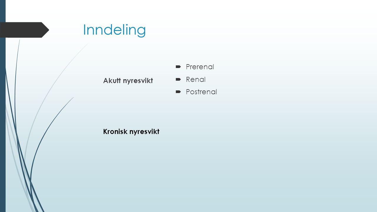 Inndeling Akutt nyresvikt  Prerenal  Renal  Postrenal Kronisk nyresvikt