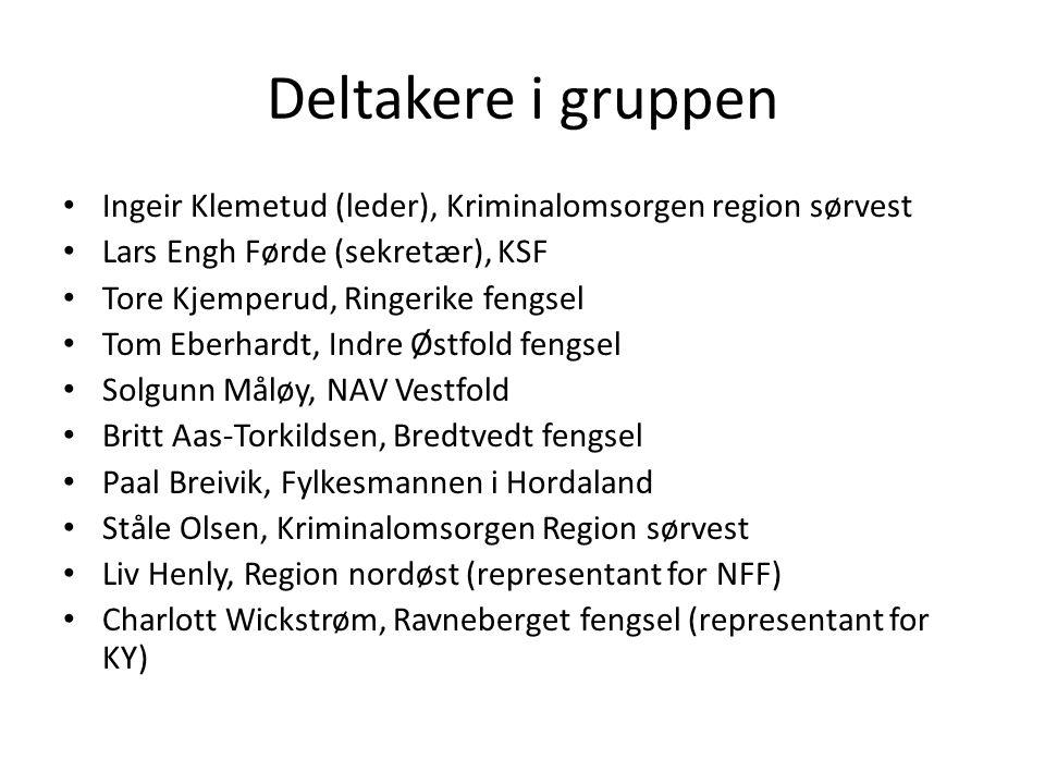 Deltakere i gruppen Ingeir Klemetud (leder), Kriminalomsorgen region sørvest Lars Engh Førde (sekretær), KSF Tore Kjemperud, Ringerike fengsel Tom Ebe