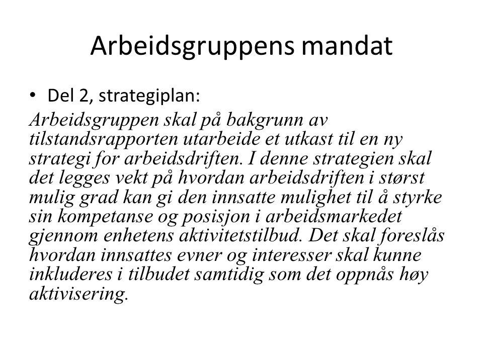 Arbeidsgruppens mandat Del 2, strategiplan: Arbeidsgruppen skal på bakgrunn av tilstandsrapporten utarbeide et utkast til en ny strategi for arbeidsdriften.