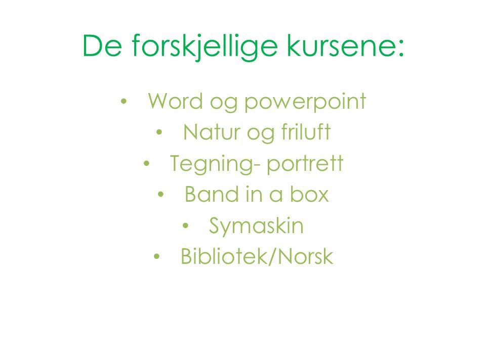 De forskjellige kursene: Word og powerpoint Natur og friluft Tegning- portrett Band in a box Symaskin Bibliotek/Norsk