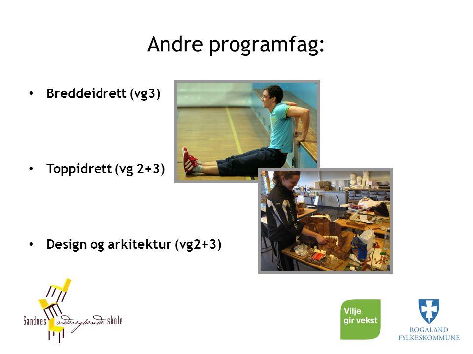 Andre programfag: Breddeidrett (vg3) Toppidrett (vg 2+3) Design og arkitektur (vg2+3)