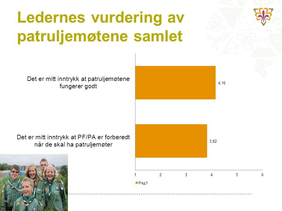 Ledernes vurdering av patruljemøtene samlet