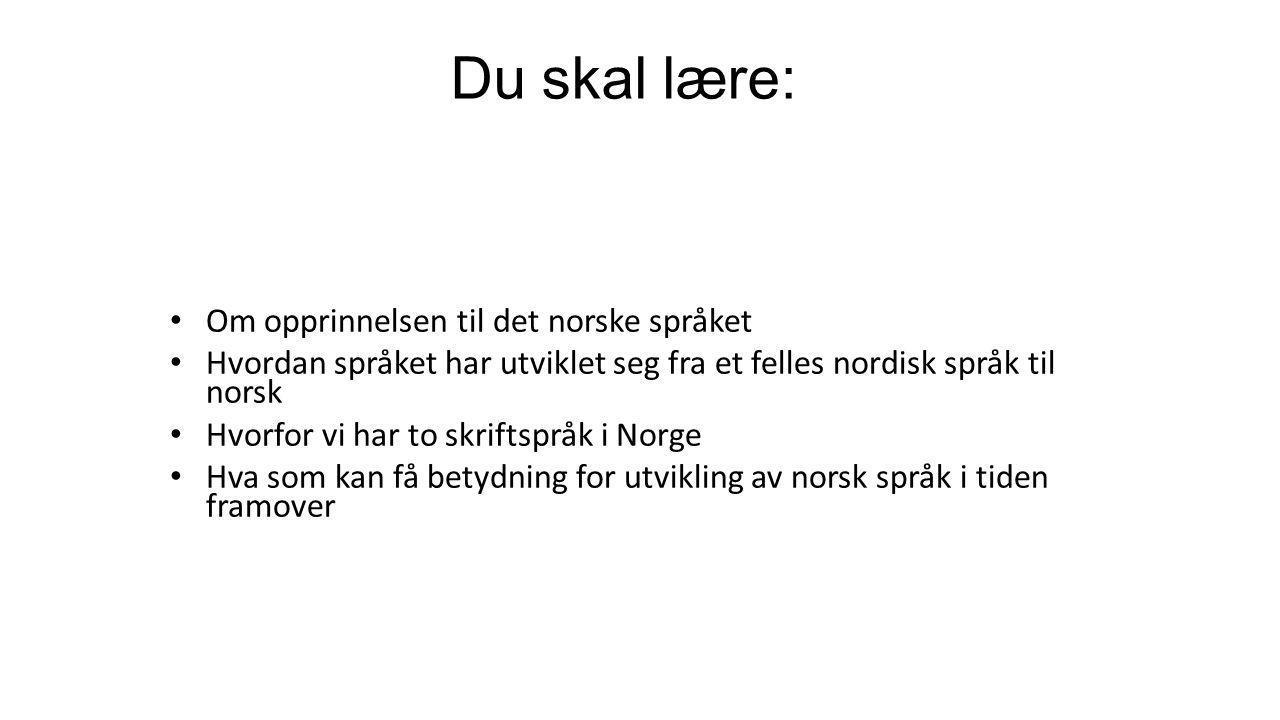 Du skal lære: Om opprinnelsen til det norske språket Hvordan språket har utviklet seg fra et felles nordisk språk til norsk Hvorfor vi har to skriftspråk i Norge Hva som kan få betydning for utvikling av norsk språk i tiden framover