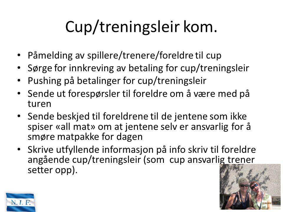 Cup/treningsleir kom. Påmelding av spillere/trenere/foreldre til cup Sørge for innkreving av betaling for cup/treningsleir Pushing på betalinger for c