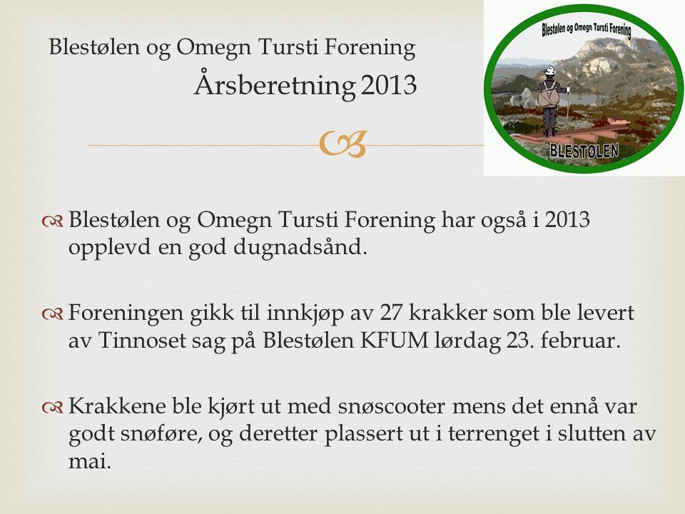 Blestølen og Omegn Tursti Forening Årsberetning 2013  Blestølen og Omegn Tursti Forening har også i 2013 opplevd en god dugnadsånd.