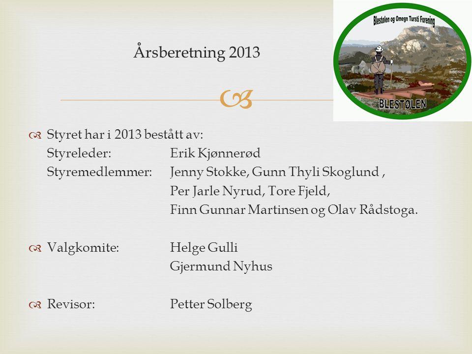  Årsberetning 2013  Styret har i 2013 bestått av: Styreleder: Erik Kjønnerød Styremedlemmer: Jenny Stokke, Gunn Thyli Skoglund, Per Jarle Nyrud, Tor