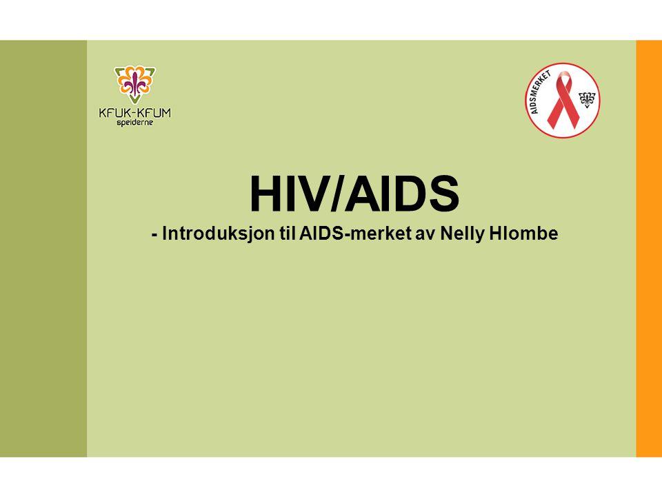 HIV/AIDS - Introduksjon til AIDS-merket av Nelly Hlombe