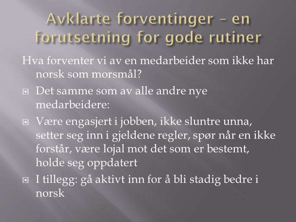 Hva forventer vi av en medarbeider som ikke har norsk som morsmål.