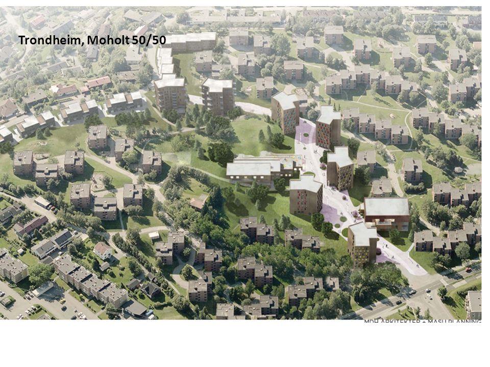 Trondheim, Moholt 50/50