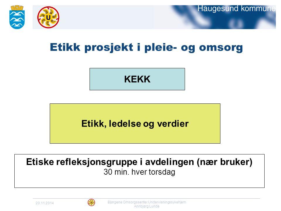20.11.2014 Bjørgene Omsorgssenter Undervisningssykehjem Annbjørg Lunde Etikk prosjekt i pleie- og omsorg Etiske refleksjonsgruppe i avdelingen (nær br
