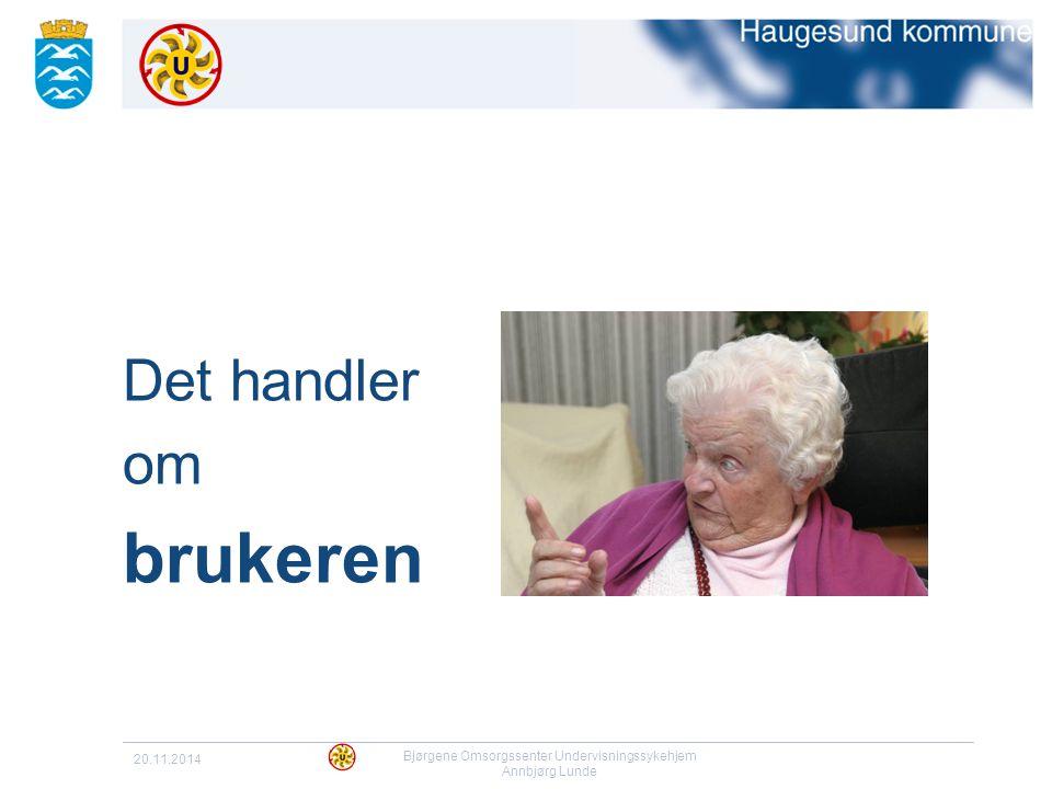 20.11.2014 Bjørgene Omsorgssenter Undervisningssykehjem Annbjørg Lunde Det handler om brukeren