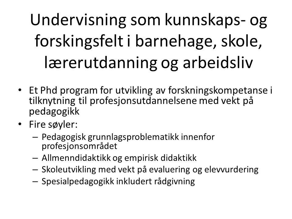 Undervisning som kunnskaps- og forskingsfelt i barnehage, skole, lærerutdanning og arbeidsliv Et Phd program for utvikling av forskningskompetanse i t
