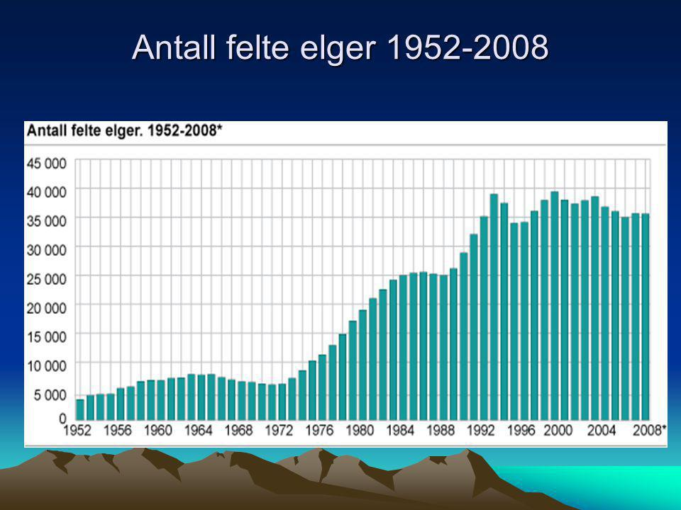 Antall felte elger 1952-2008