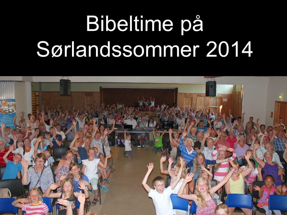 Bibeltime på Sørlandssommer 2014