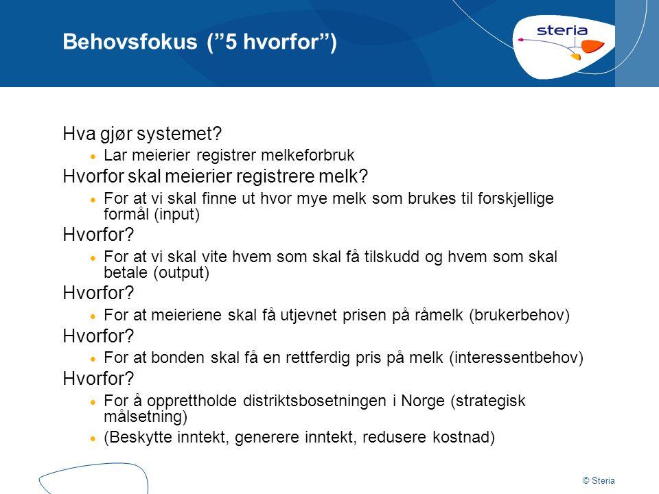 © Steria Behovsfokus ( 5 hvorfor ) Hva gjør systemet.