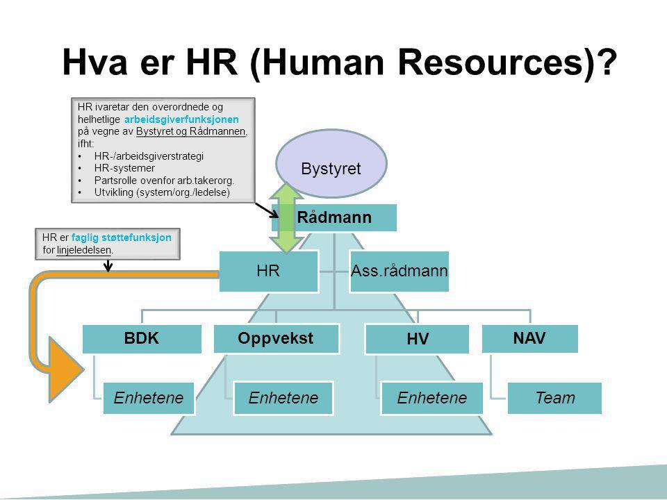 Hva er HR (Human Resources)? Rådmann BDK Enhetene Oppvekst Enhetene HV Enhetene NAV Team HRAss.rådmann Bystyret HR ivaretar den overordnede og helhetl