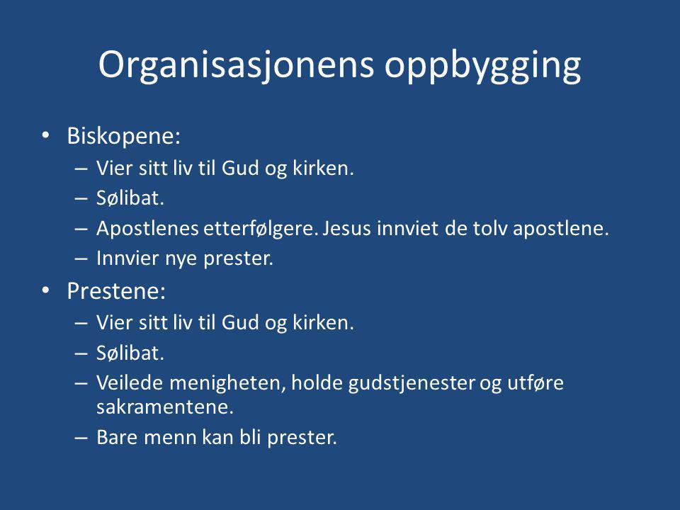 Organisasjonens oppbygging Biskopene: – Vier sitt liv til Gud og kirken.