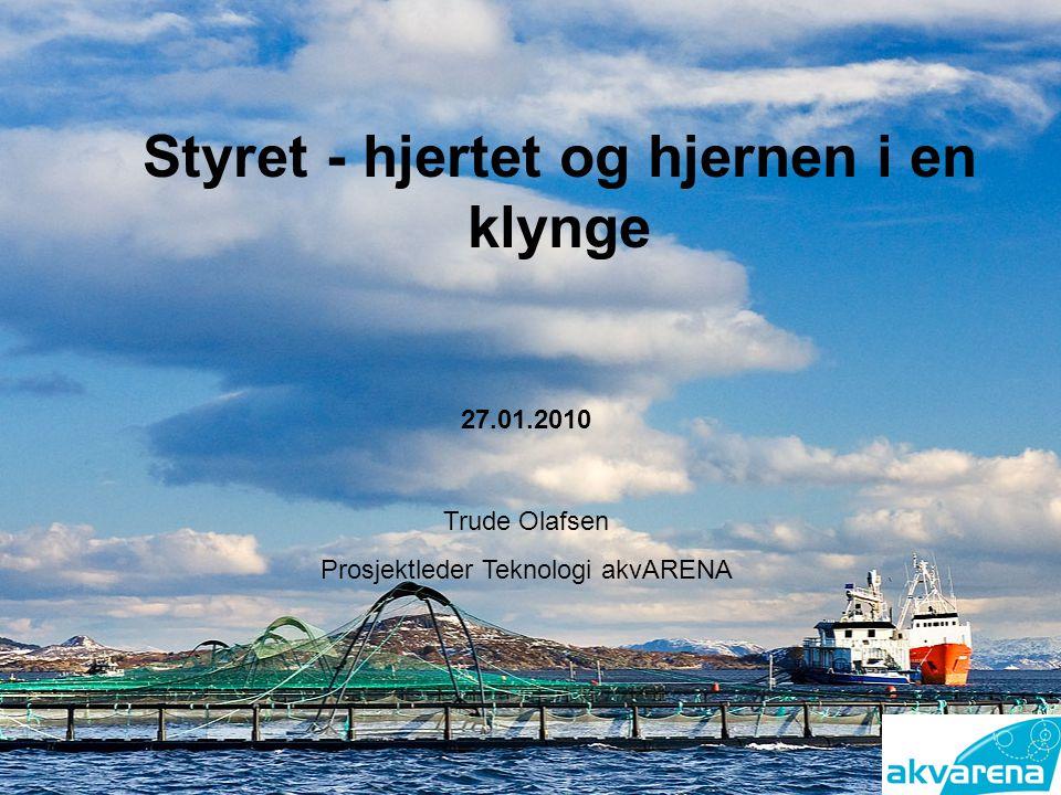 Styret - hjertet og hjernen i en klynge Trude Olafsen Prosjektleder Teknologi akvARENA 27.01.2010