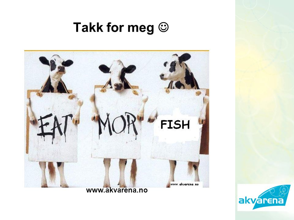 Takk for meg www.akvarena.no