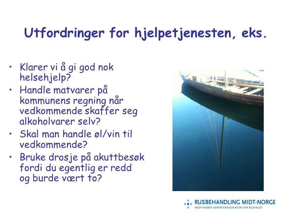 14 Utfordringer for hjelpetjenesten, eks.Klarer vi å gi god nok helsehjelp.