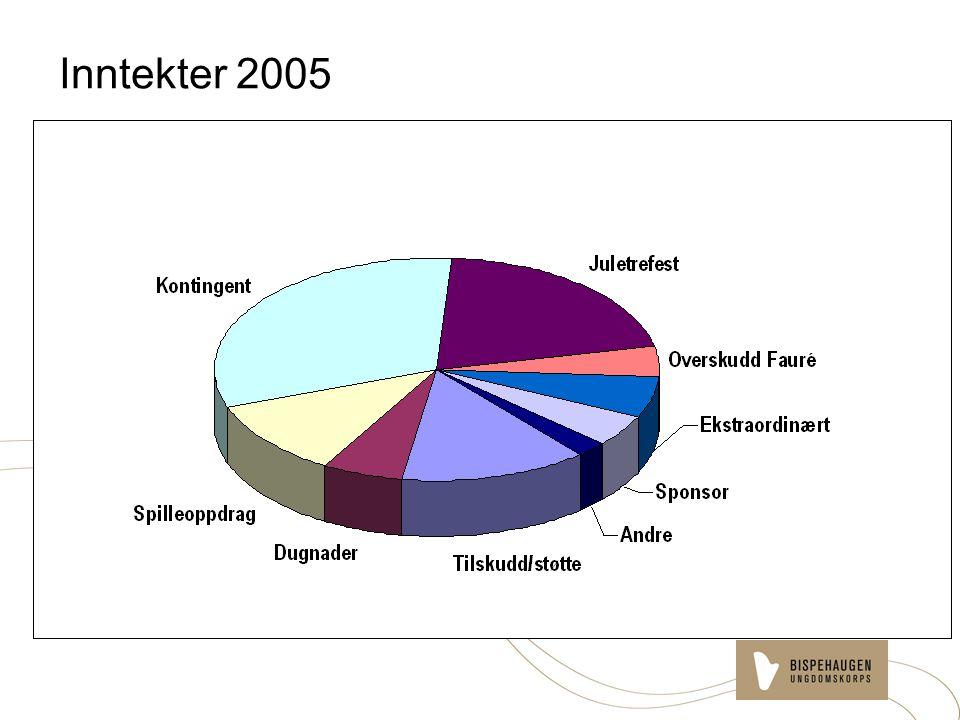 Inntekter 2005