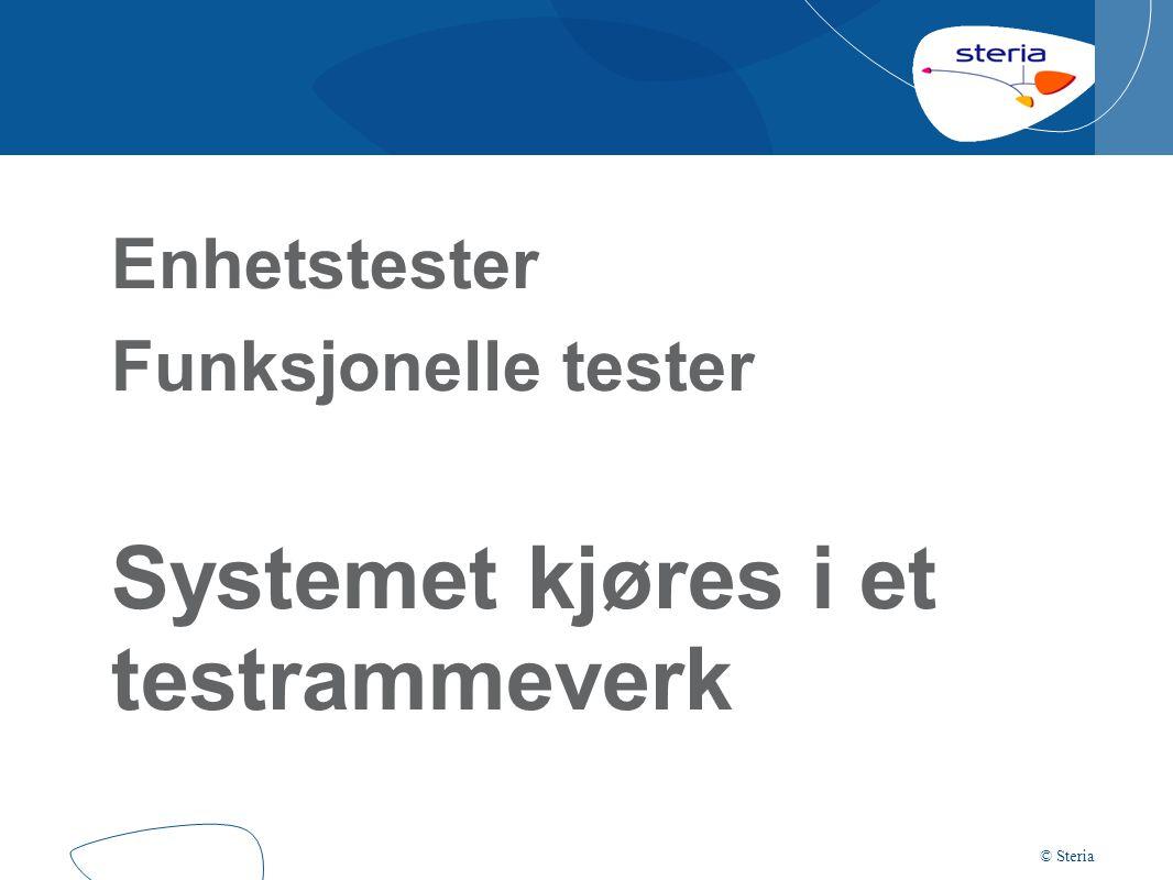 Enhetstester Funksjonelle tester Systemet kjøres i et testrammeverk