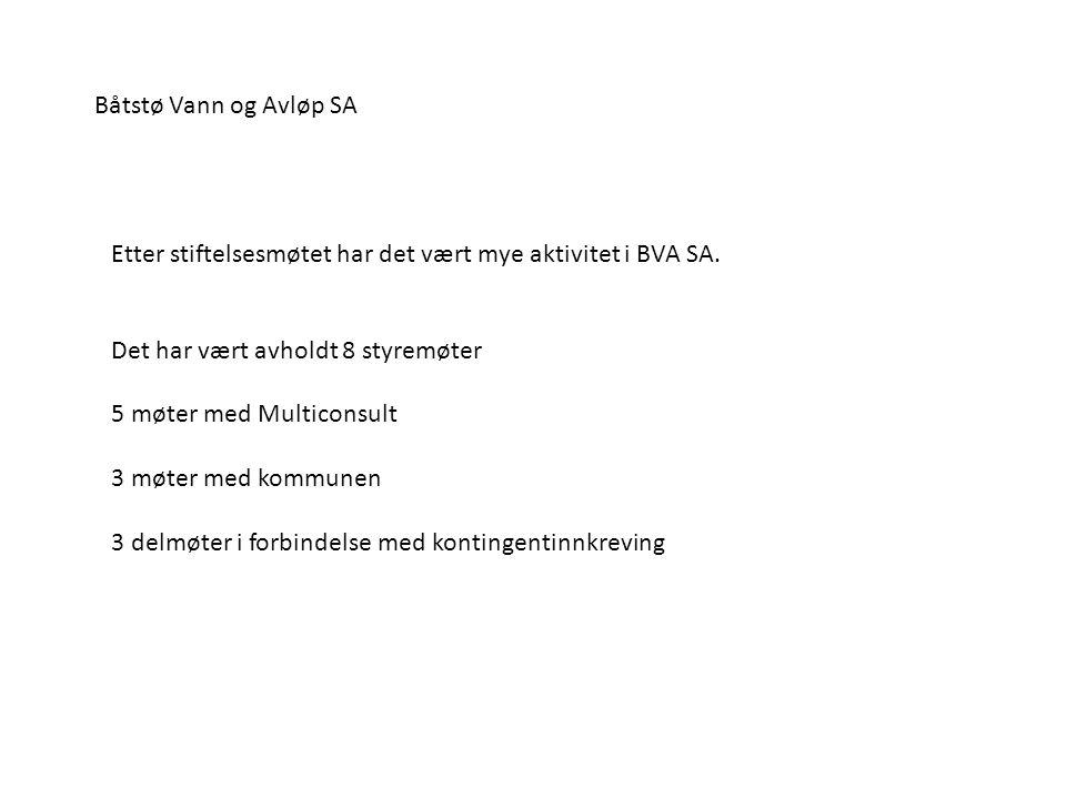 Etter stiftelsesmøtet har det vært mye aktivitet i BVA SA. Det har vært avholdt 8 styremøter 5 møter med Multiconsult 3 møter med kommunen 3 delmøter