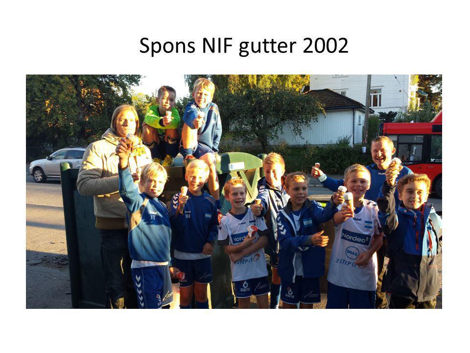 Spons NIF gutter 2002