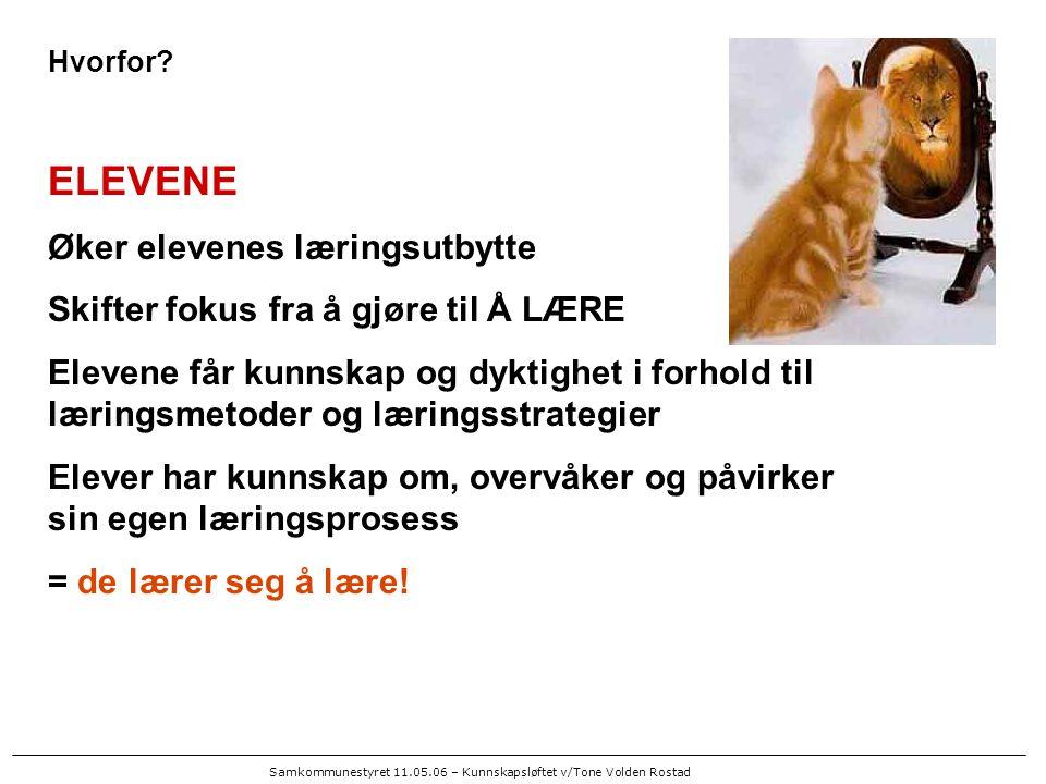 Samkommunestyret 11.05.06 – Kunnskapsløftet v/Tone Volden Rostad TILPASSET OPPLÆRING - i hodet på Petter- Når trives jeg best.