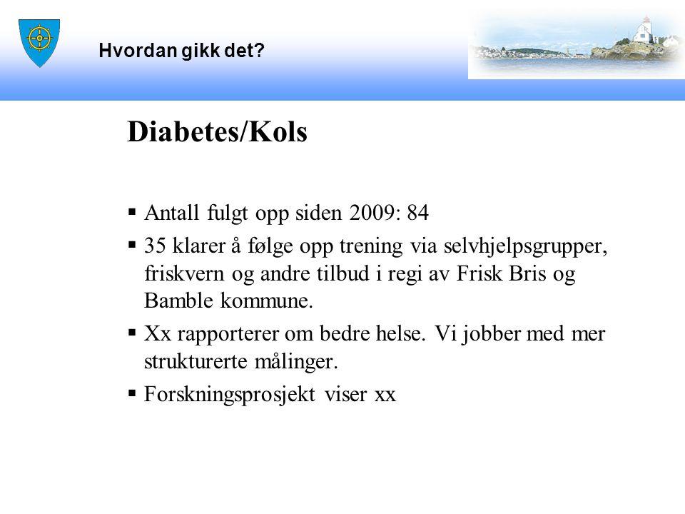 Hvordan gikk det? Diabetes/Kols  Antall fulgt opp siden 2009: 84  35 klarer å følge opp trening via selvhjelpsgrupper, friskvern og andre tilbud i r