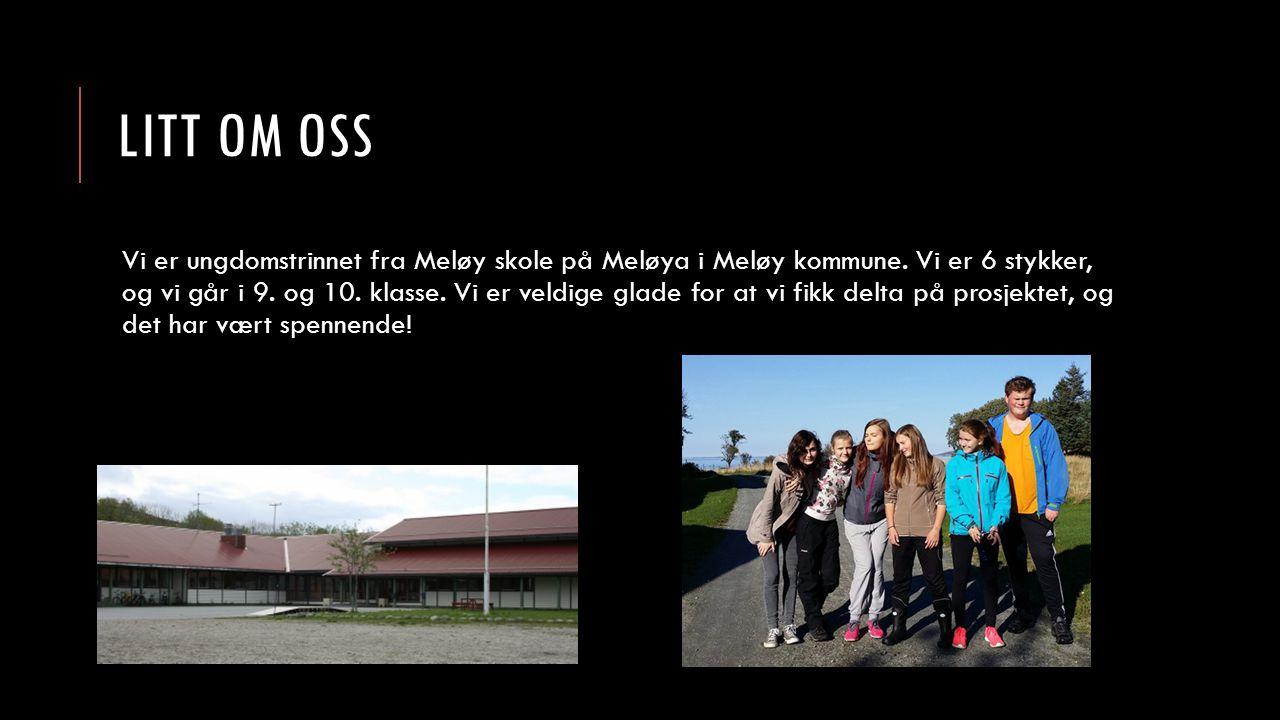 LITT OM OSS Vi er ungdomstrinnet fra Meløy skole på Meløya i Meløy kommune. Vi er 6 stykker, og vi går i 9. og 10. klasse. Vi er veldige glade for at