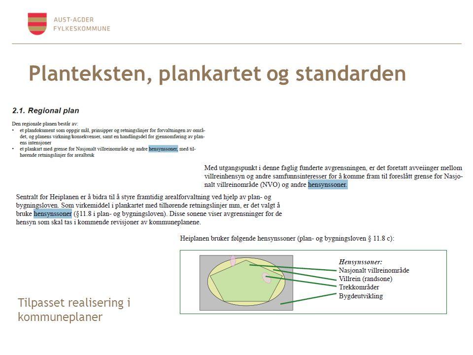 Planteksten, plankartet og standarden Tilpasset realisering i kommuneplaner