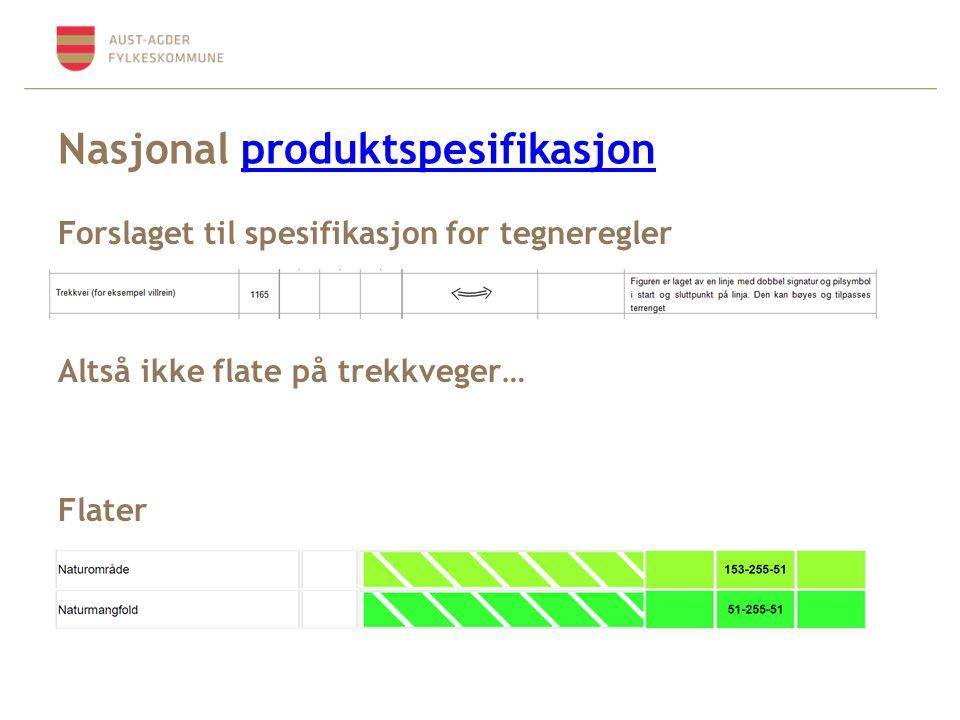 Nasjonal produktspesifikasjonproduktspesifikasjon Forslaget til spesifikasjon for tegneregler Altså ikke flate på trekkveger… Flater