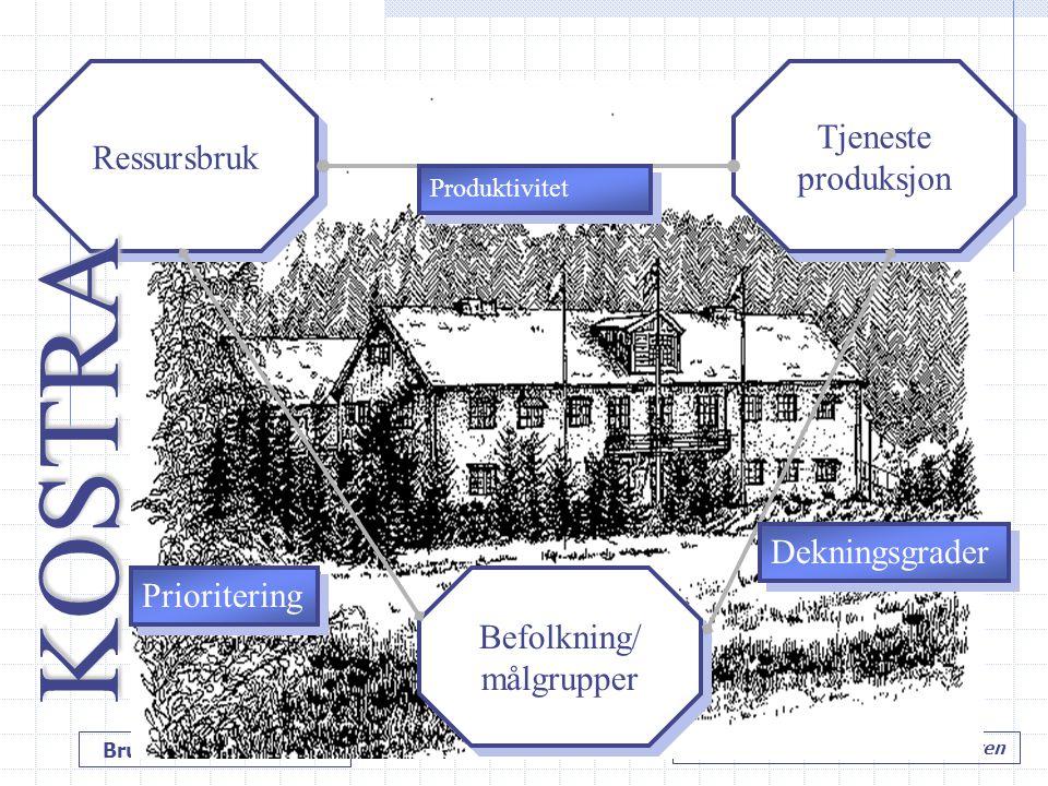 Bruk av KOSTRA-data Hole kommune v/ Tore M. Andresen Ressursbruk Befolkning/ målgrupper Befolkning/ målgrupper Tjeneste produksjon Tjeneste produksjon