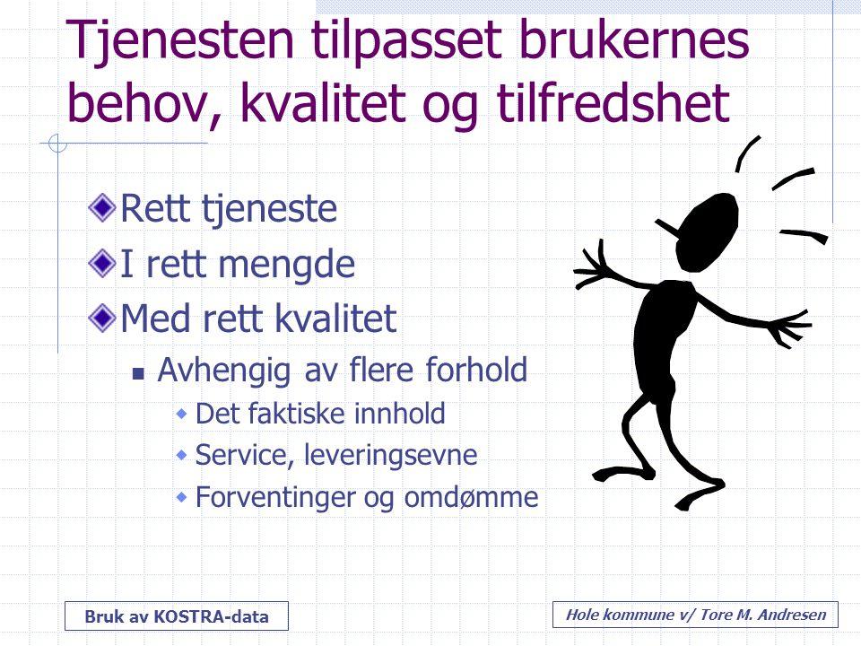 Bruk av KOSTRA-data Hole kommune v/ Tore M. Andresen Tjenesten tilpasset brukernes behov, kvalitet og tilfredshet Rett tjeneste I rett mengde Med rett