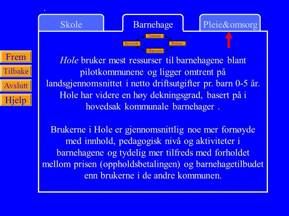 SkolePleie&omsorgBarnehage Frem Tilbake Avslutt Hjelp Hole bruker mest ressurser til barnehagene blant pilotkommunene og ligger omtrent på landsgjennomsnittet i netto driftsutgifter pr.