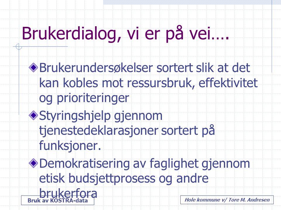 Bruk av KOSTRA-data Hole kommune v/ Tore M. Andresen Brukerdialog, vi er på vei…. Brukerundersøkelser sortert slik at det kan kobles mot ressursbruk,