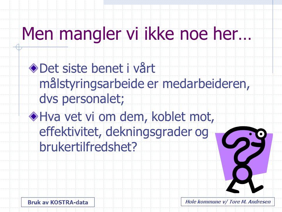 Bruk av KOSTRA-data Hole kommune v/ Tore M.