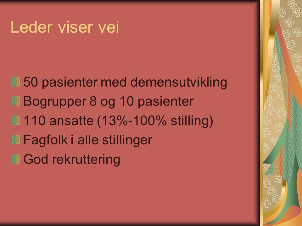 Leder viser vei 50 pasienter med demensutvikling Bogrupper 8 og 10 pasienter 110 ansatte (13%-100% stilling) Fagfolk i alle stillinger God rekrutterin