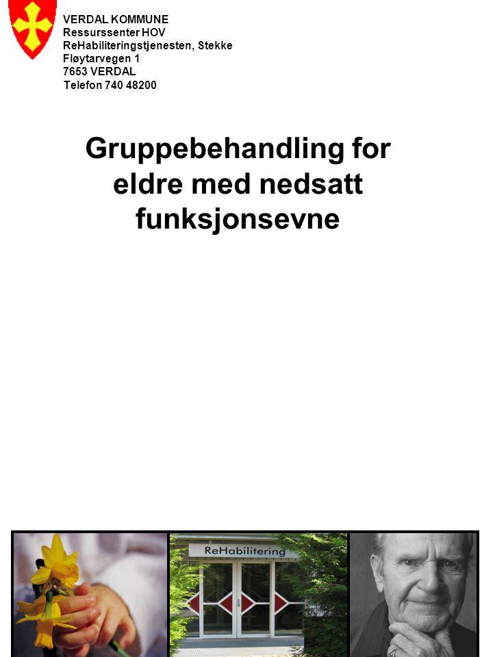 Gruppebehandling for eldre med nedsatt funksjonsevne VERDAL KOMMUNE Ressurssenter HOV ReHabiliteringstjenesten, Stekke Fløytarvegen 1 7653 VERDAL Telefon 740 48200