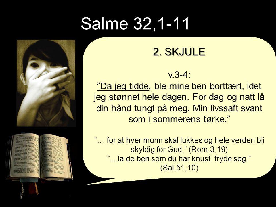 """Salme 32,1-11 2. SKJULE v.3-4: """"Da jeg tidde, ble mine ben borttært, idet jeg stønnet hele dagen. For dag og natt lå din hånd tungt på meg. Min livssa"""
