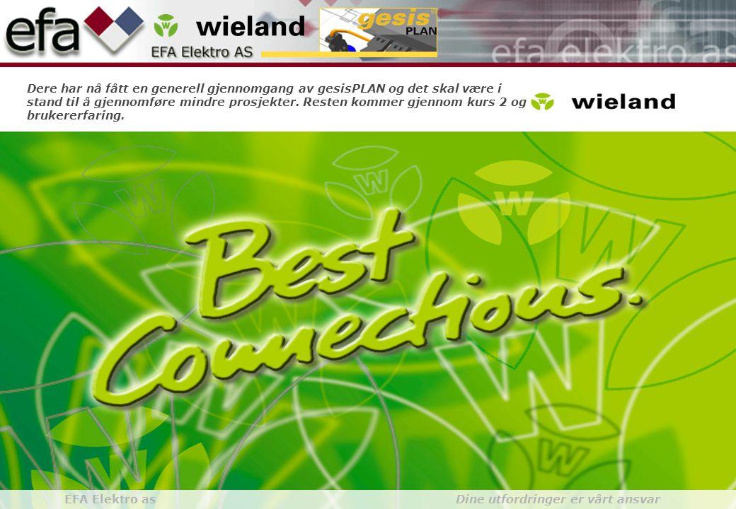 Wieland GroupBuilding Installationgesis gesisPLAN EFA Elektro as Dine utfordringer er vårt ansvar Dere har nå fått en generell gjennomgang av gesisPLAN og det skal være i stand til å gjennomføre mindre prosjekter.