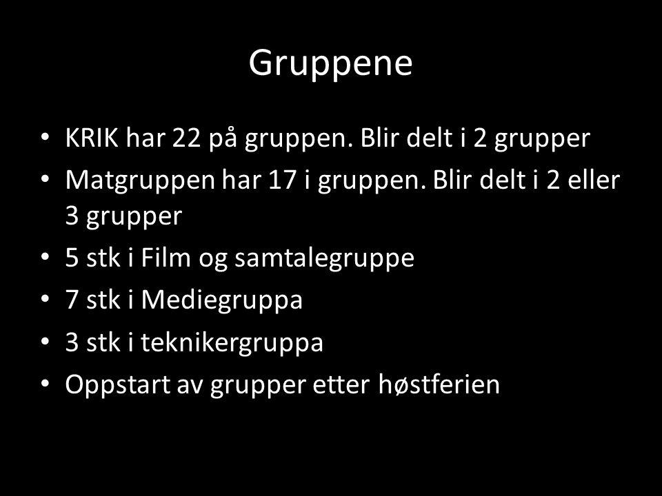 Gruppene KRIK har 22 på gruppen.Blir delt i 2 grupper Matgruppen har 17 i gruppen.