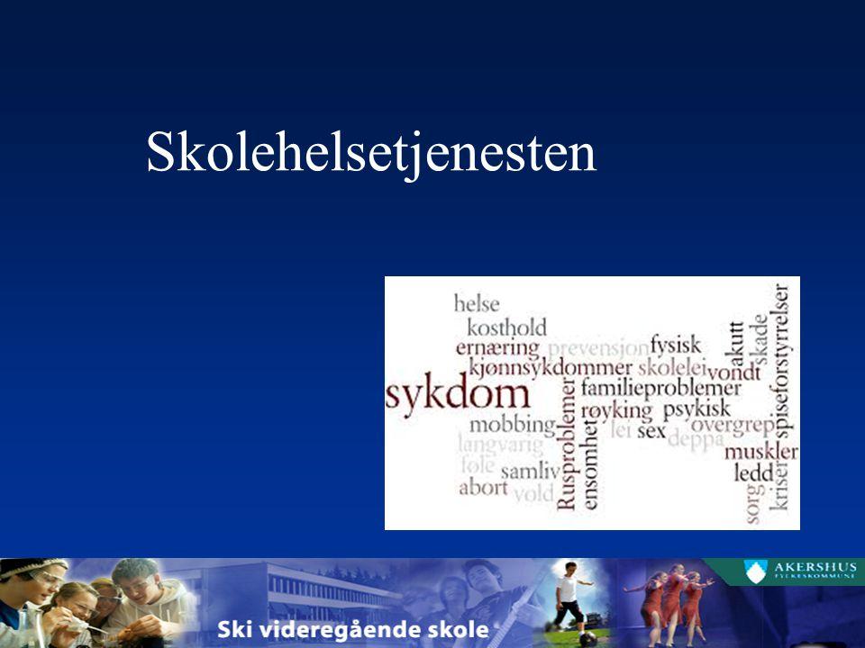 Informasjonskanaler It's Learning SkoleArena www.ski.vgs.no Facebook: Ski vgs