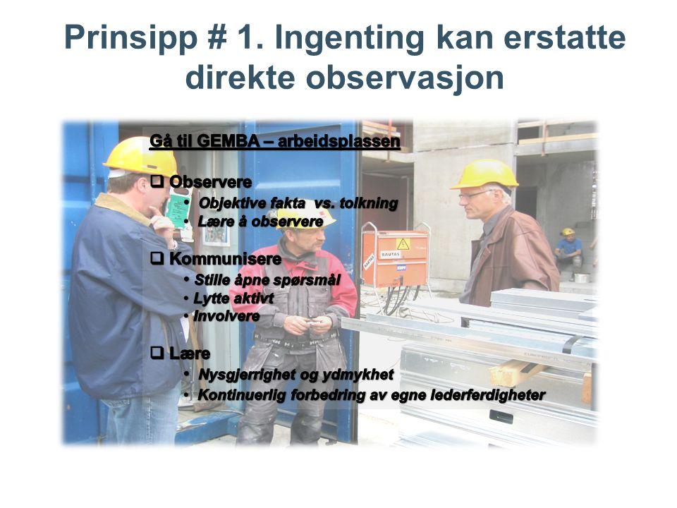 Prinsipp # 1. Ingenting kan erstatte direkte observasjon