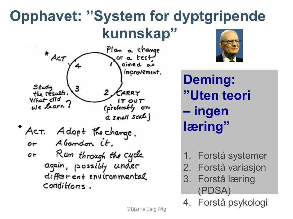 """©Bjarne Berg Wig Opphavet: """"System for dyptgripende kunnskap"""" Deming: """"Uten teori – ingen læring"""" 1.Forstå systemer 2.Forstå variasjon 3.Forstå læring"""