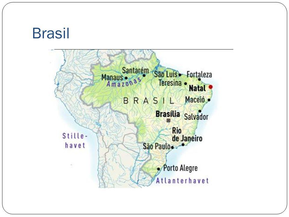 Klimaet og vegetasjonen i Brasil I nord er regnskogsområdet Amazonas som består av et tropisk klima.