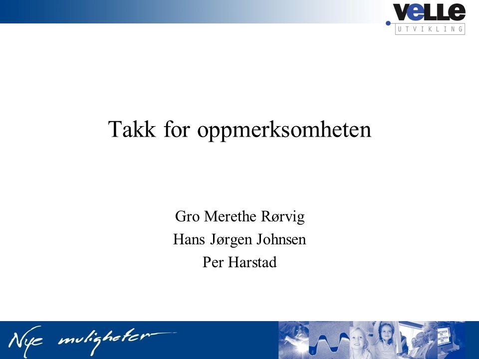 Takk for oppmerksomheten Gro Merethe Rørvig Hans Jørgen Johnsen Per Harstad